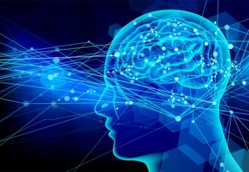 脳の電気現象